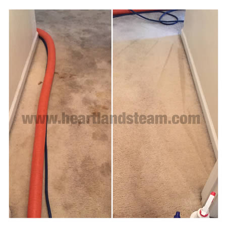 Carpet Cleaning Heartland Steam Cleaning