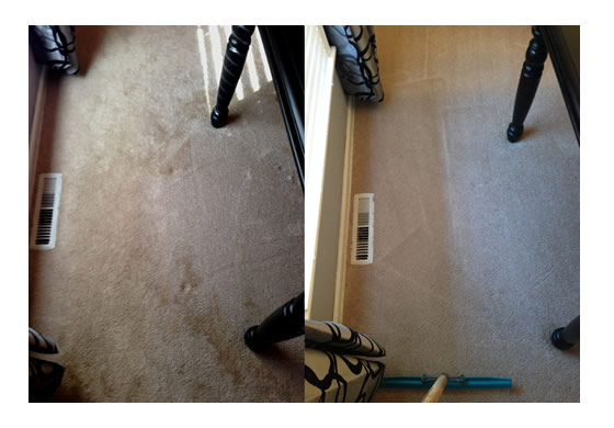 carpet-urine-stain-before-after